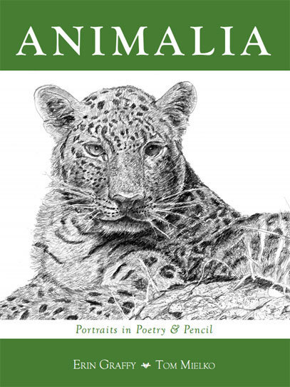 Animalia, by Erin Graffy and Tom Mielko, Hard Cover