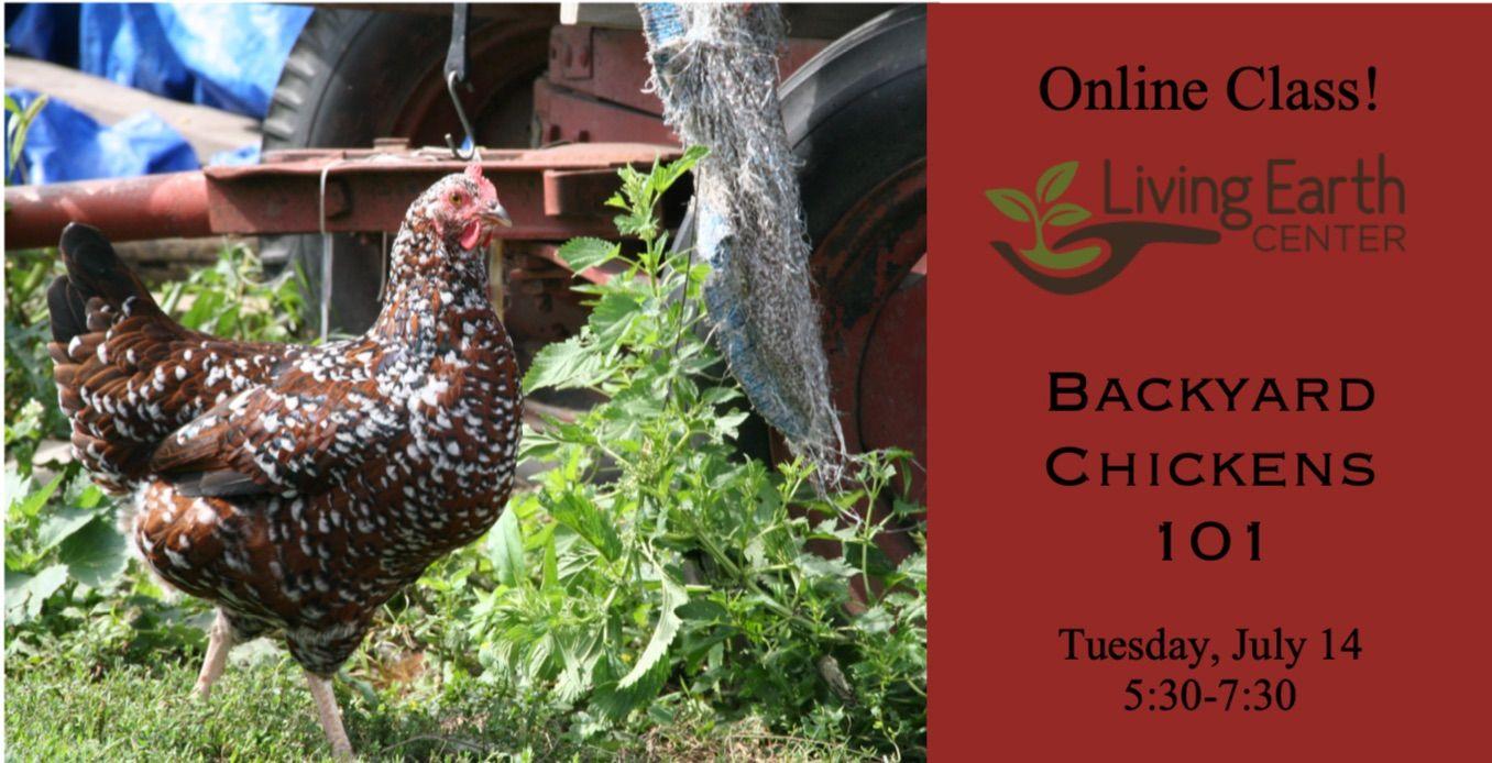 Online Class - Backyard Chickens 101