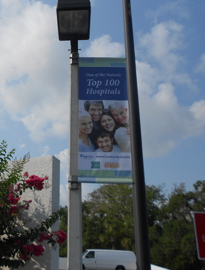 Avenue Banner 2