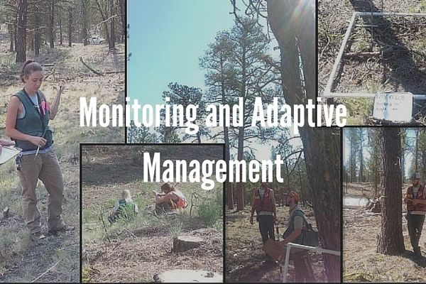 Monitoring and Adaptive Management