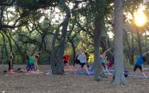 Yoga for Nature Lovers returns to the CNC&F on January 4.