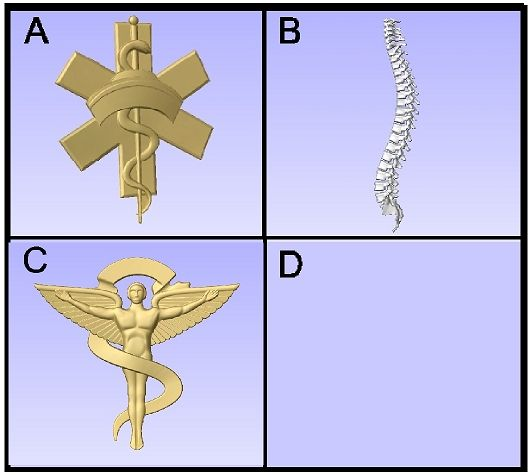 B11491 - CarvedArt for Nurse and Chiropractor