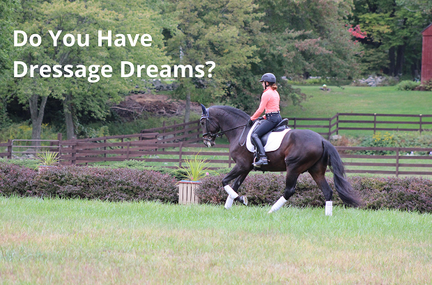 We can help turn your dreams into action