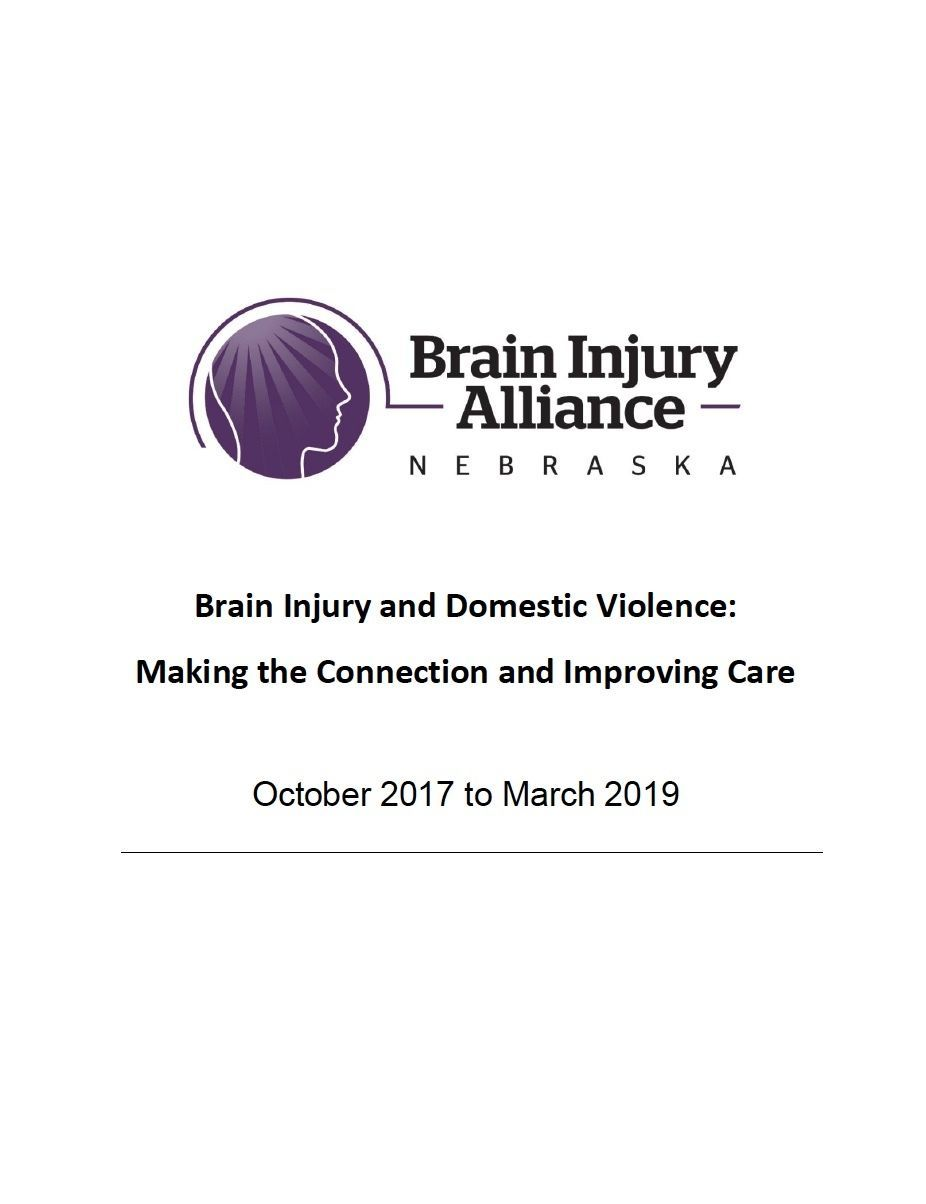 2019 Brain Injury in Domestic Violence Shelters Results