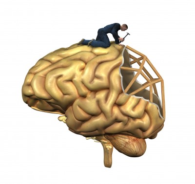 Brain Recovery Following Alcohol Use Disorders