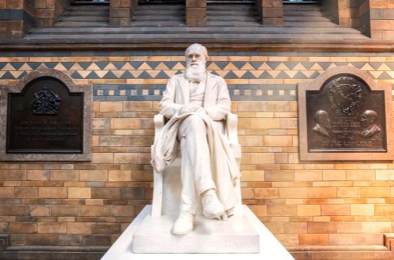Evolution Evangelists Skirt Evidence, Commemorate Darwin's Descent of Man