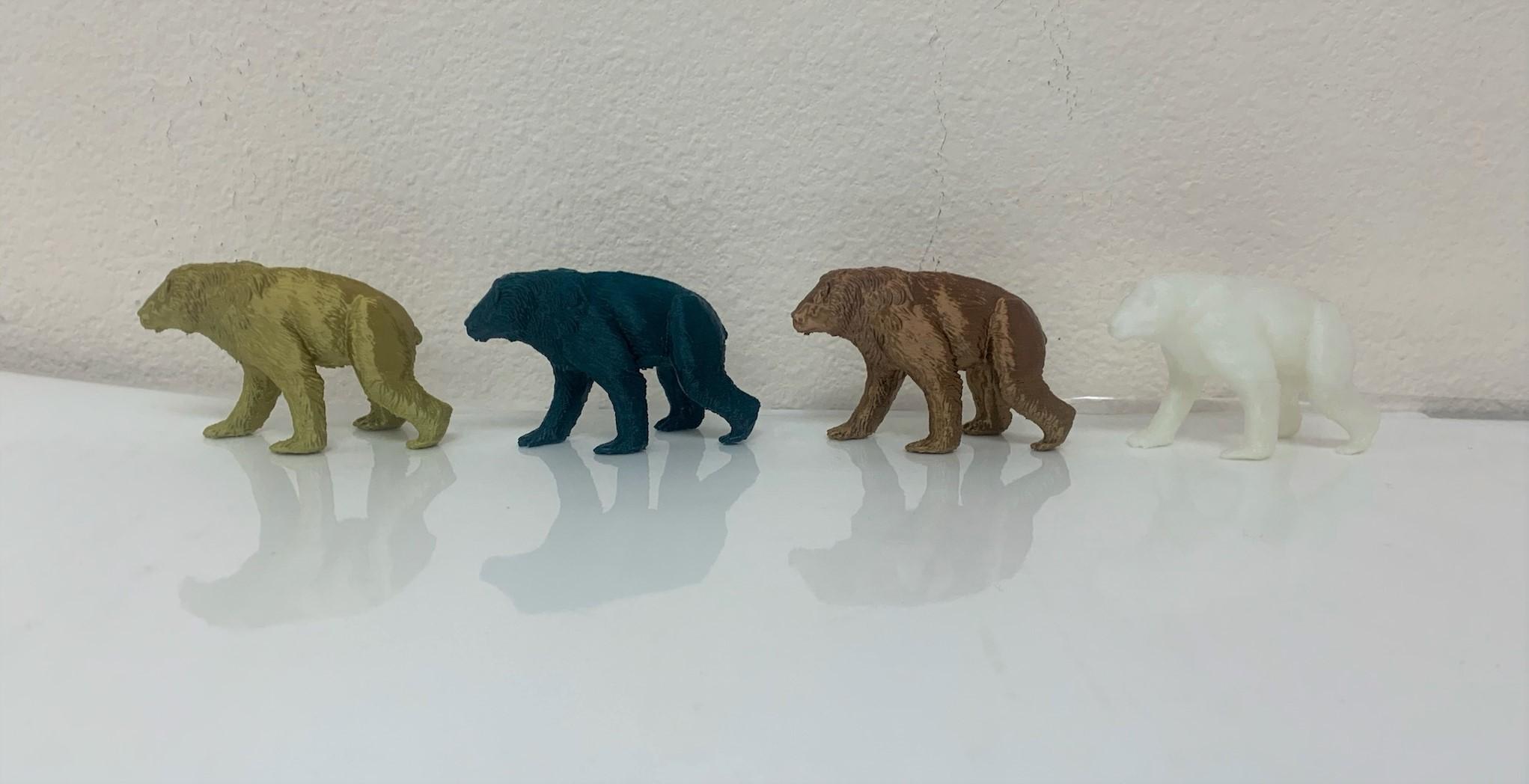 3D Printed Giant Short Faced Bear