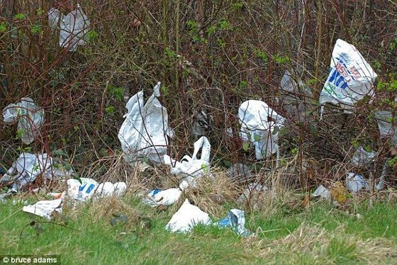 Plastic Bag Ordinances Proliferate Across Massachusetts