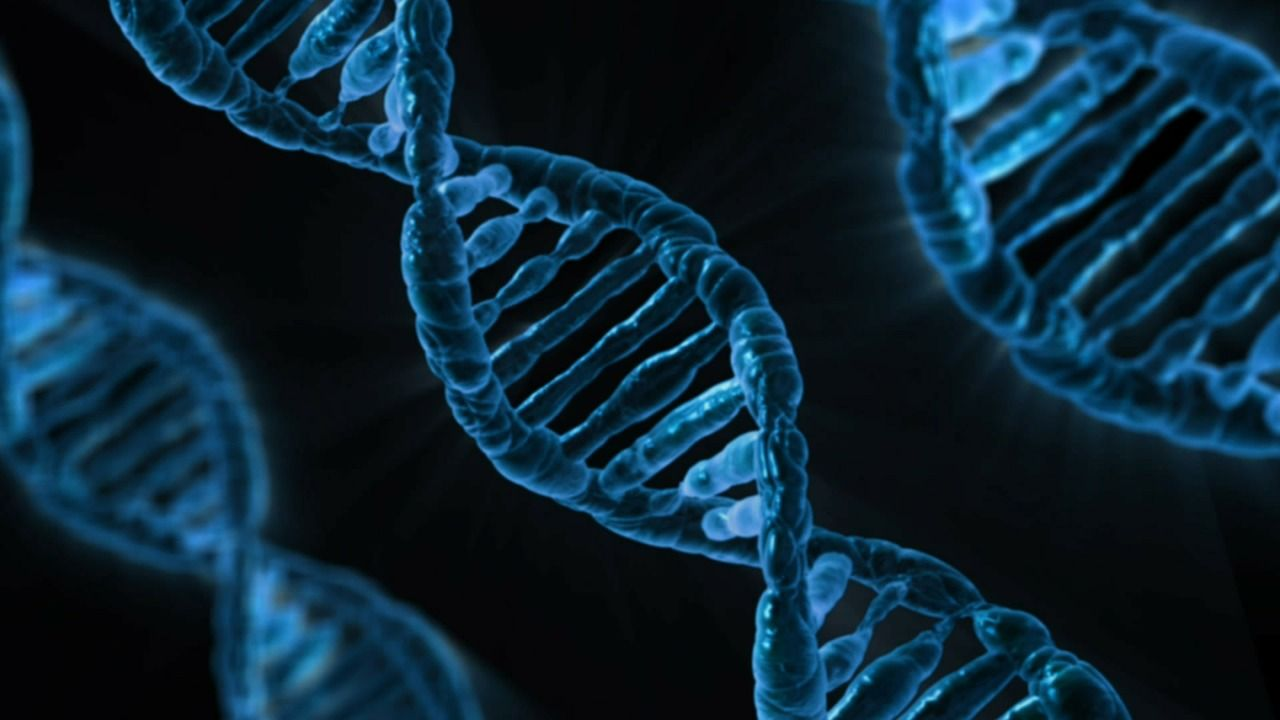 A picture of three strands of DNA