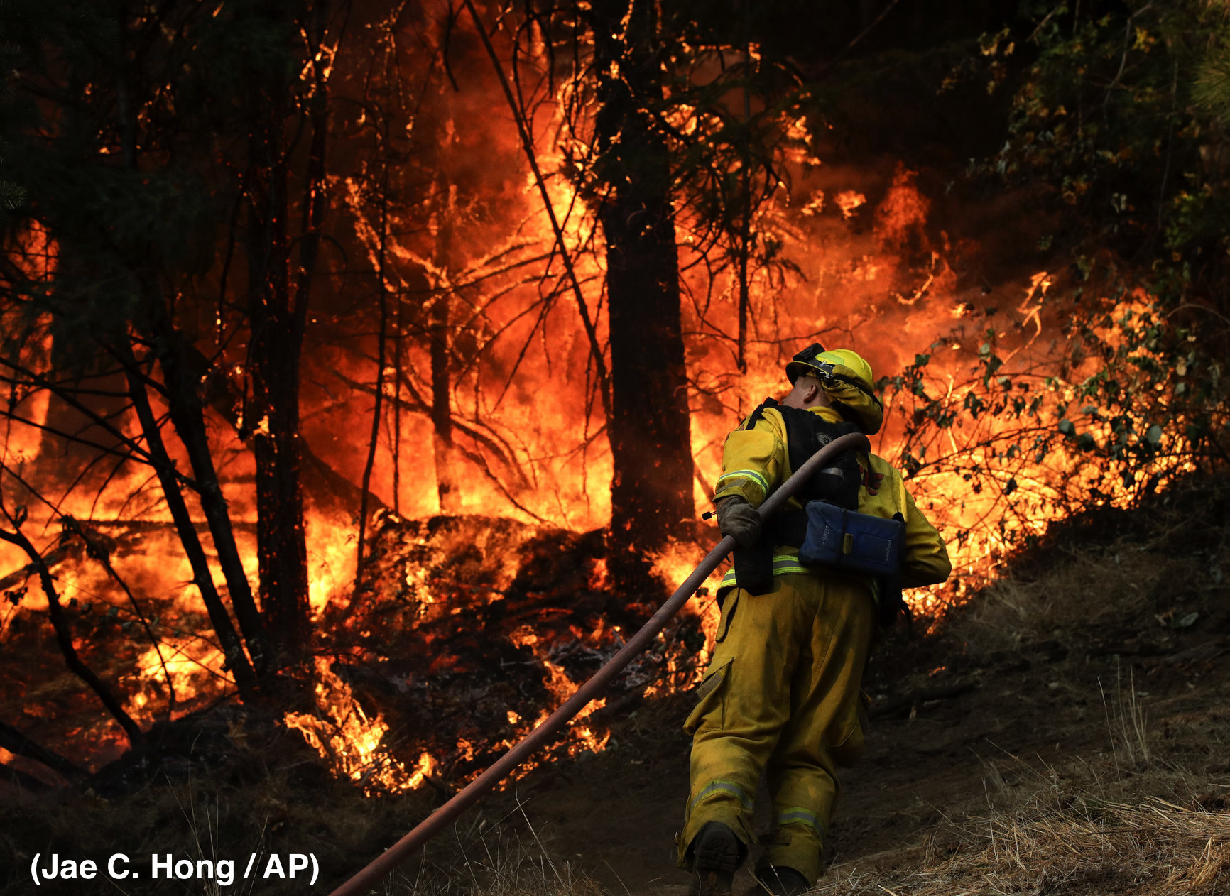 California Wildfires Illuminate Labor, Immigration, & Public Health Issues