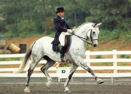 Michael Poulin to Donate Clinic to State That Raises Most New Donations For The Dressage Foundation in 2014