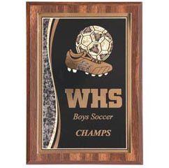 Walnut Plaque with Specialized Brass Plate