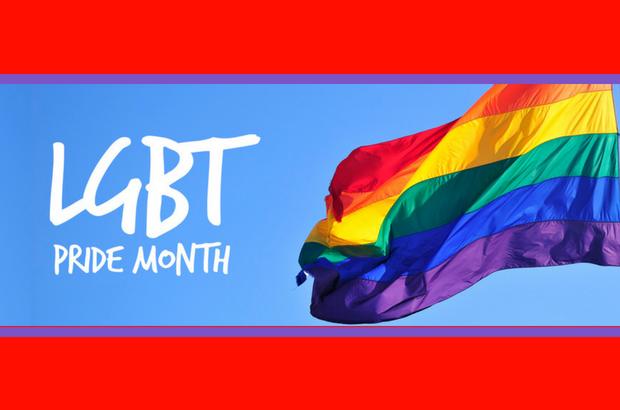DCADV Celebrates Pride Month