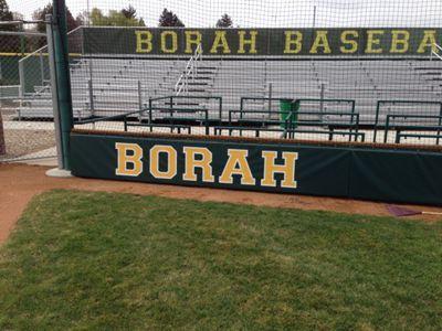 Borah High Baseball