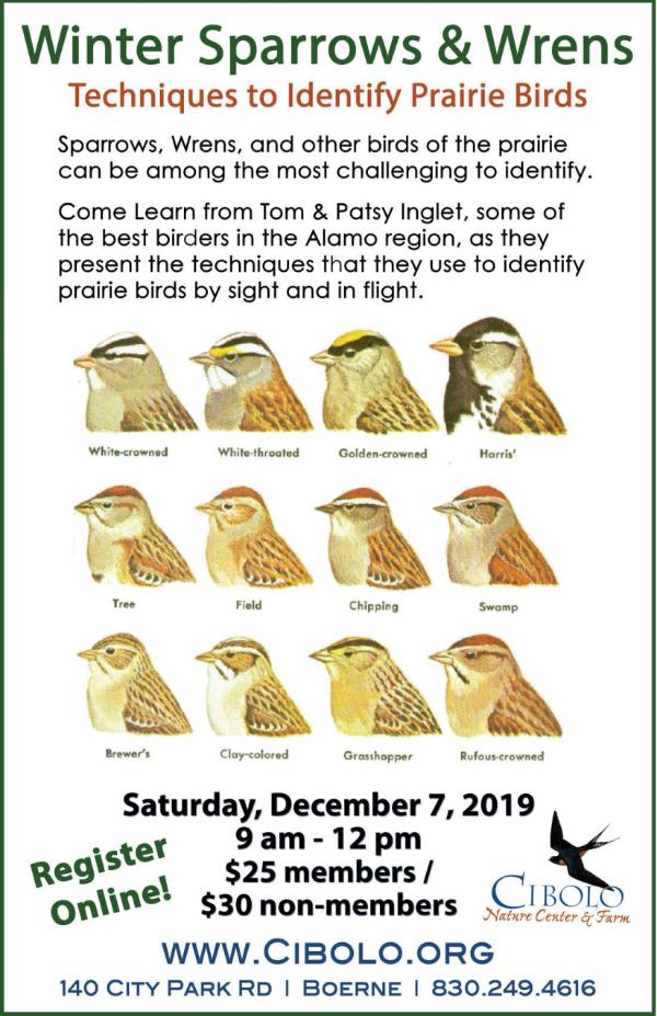CNC: Winter Prairie Birds Workshop