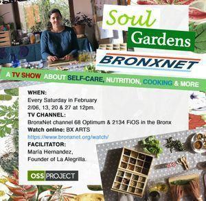 BronxNet February episodes