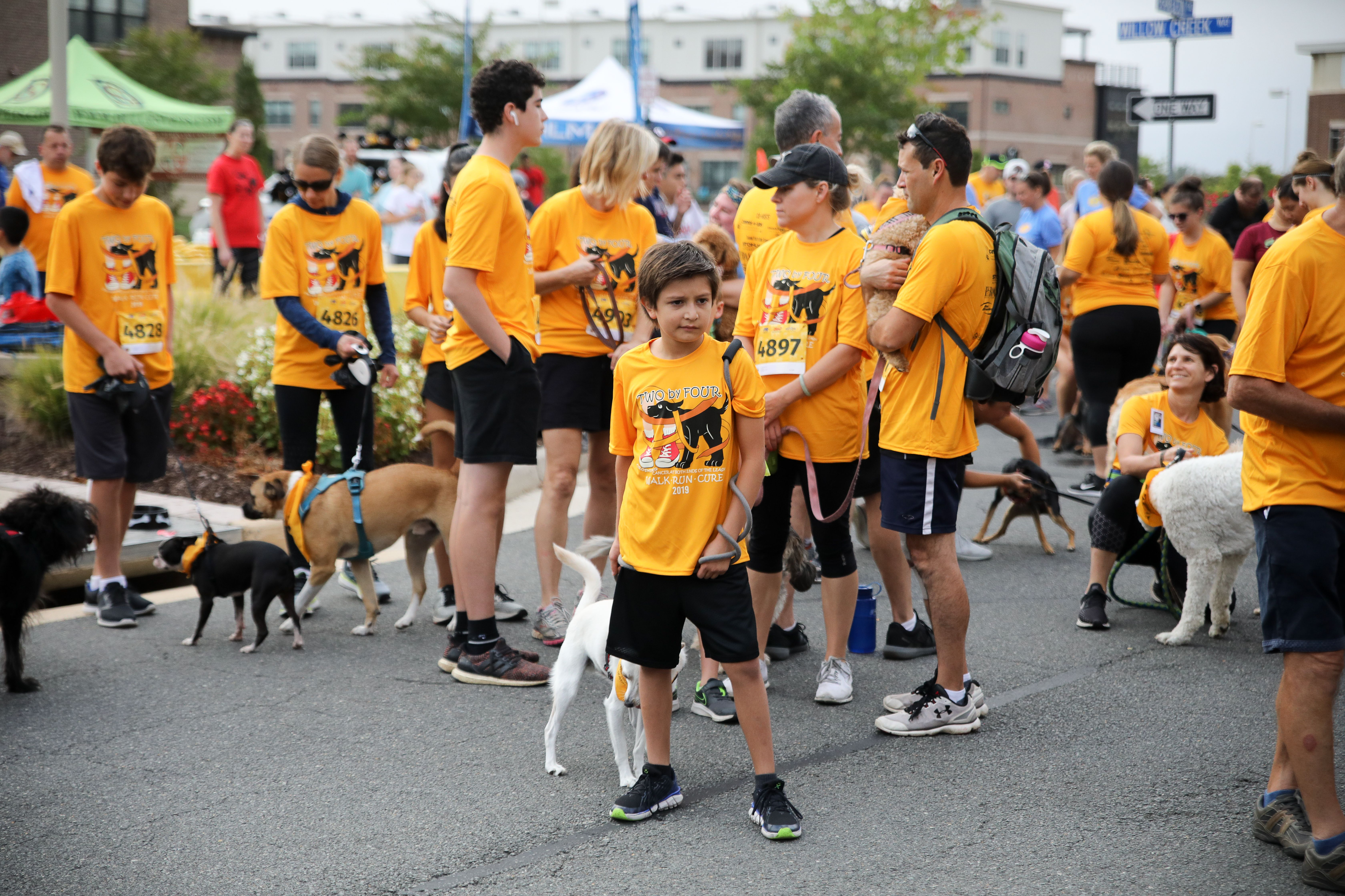 2020 Virtual Two By Four Race Dog Jog & Fun Run