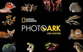 PHOTO ARK - JOEL SARTORE