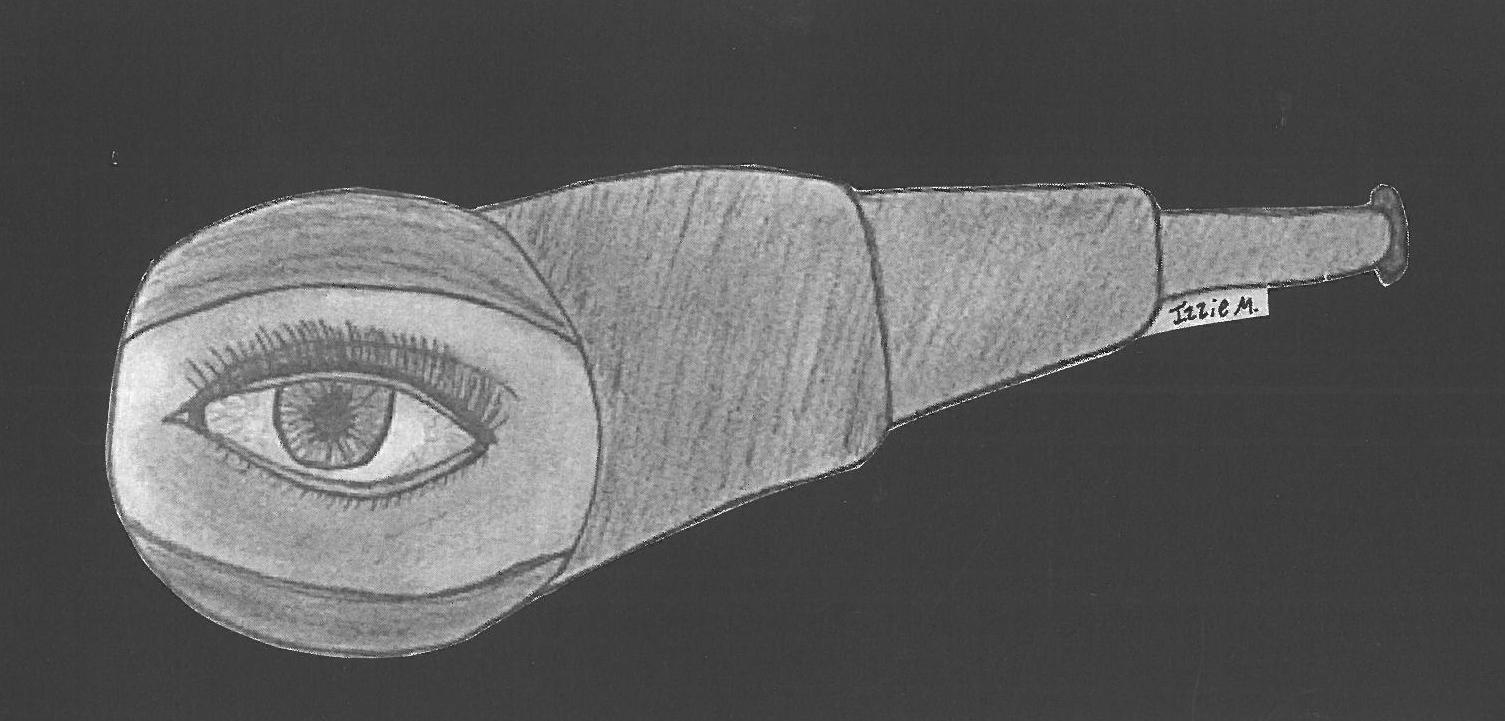 Head to Toe: Eye