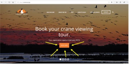 How to Book a Crane Viewing Tour