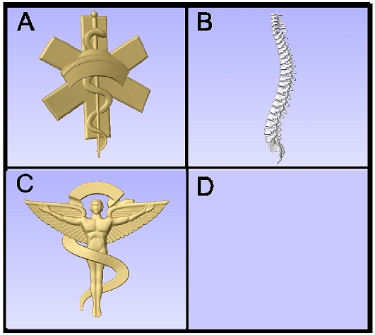 B11291 - CarvedArt for Nurse and Chiropractor