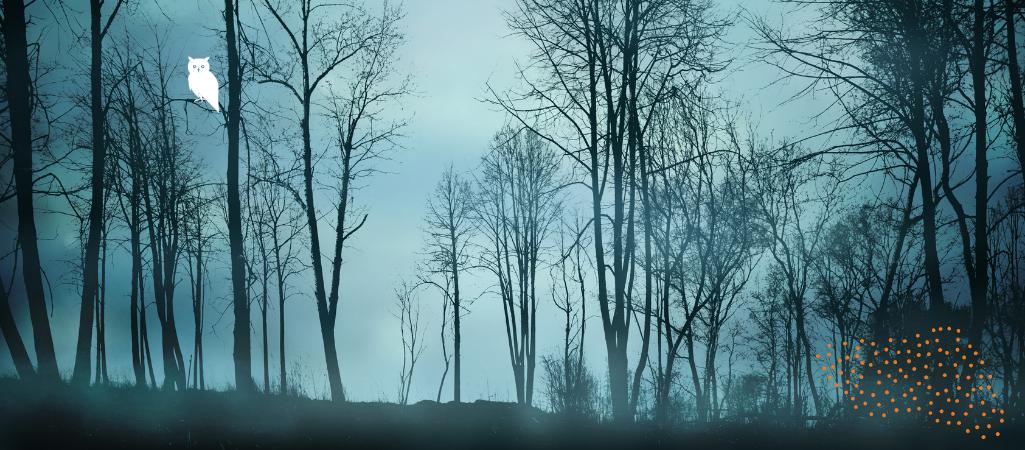 Learning to Walk in the Dark A Lenten Study