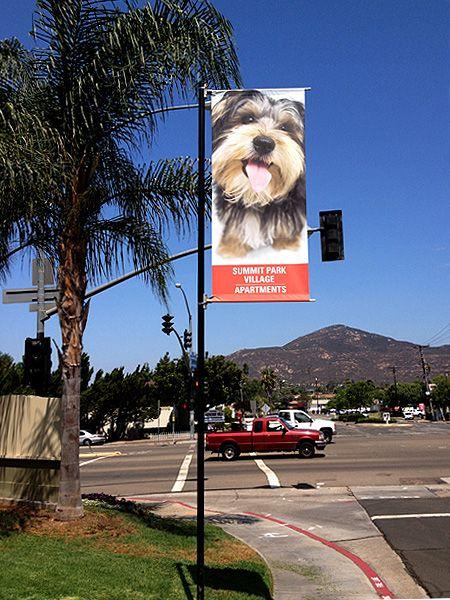 Outdoor Banners & Brackets