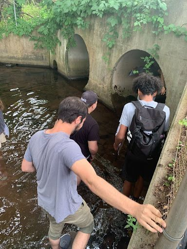 Watershed Stewardship Project