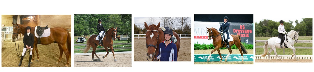 TDF Awards Continuing Education Grants To Five Dressage Instructors
