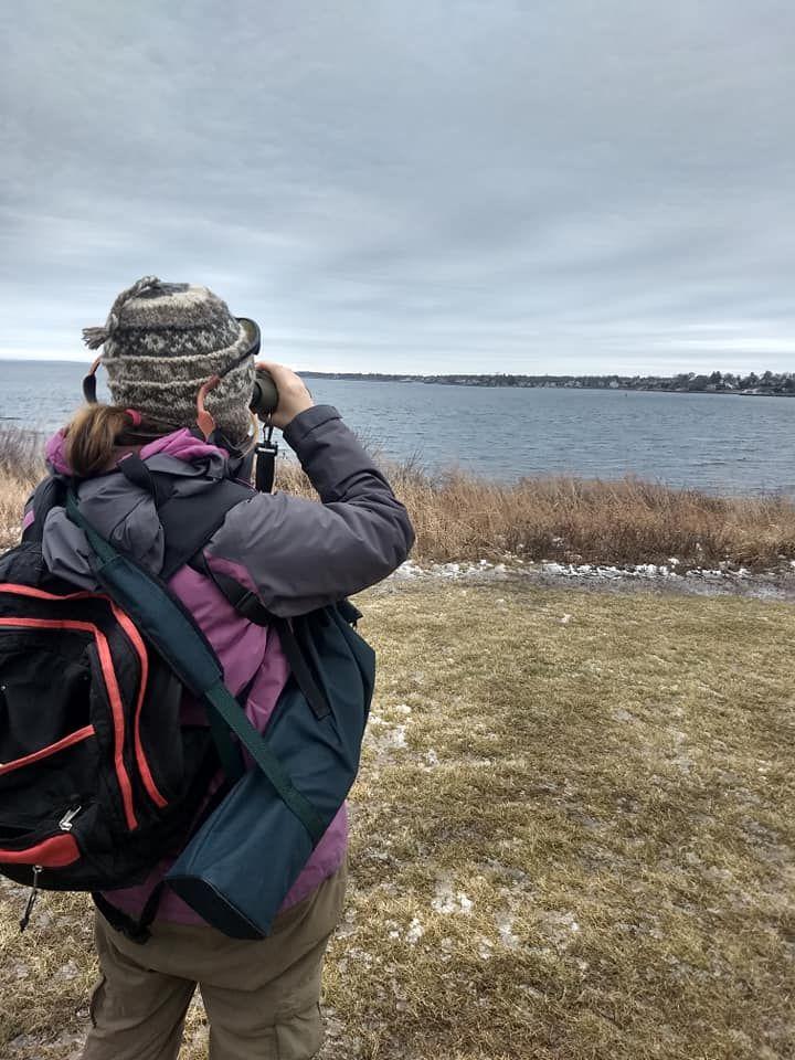 Providence Birding Adventure