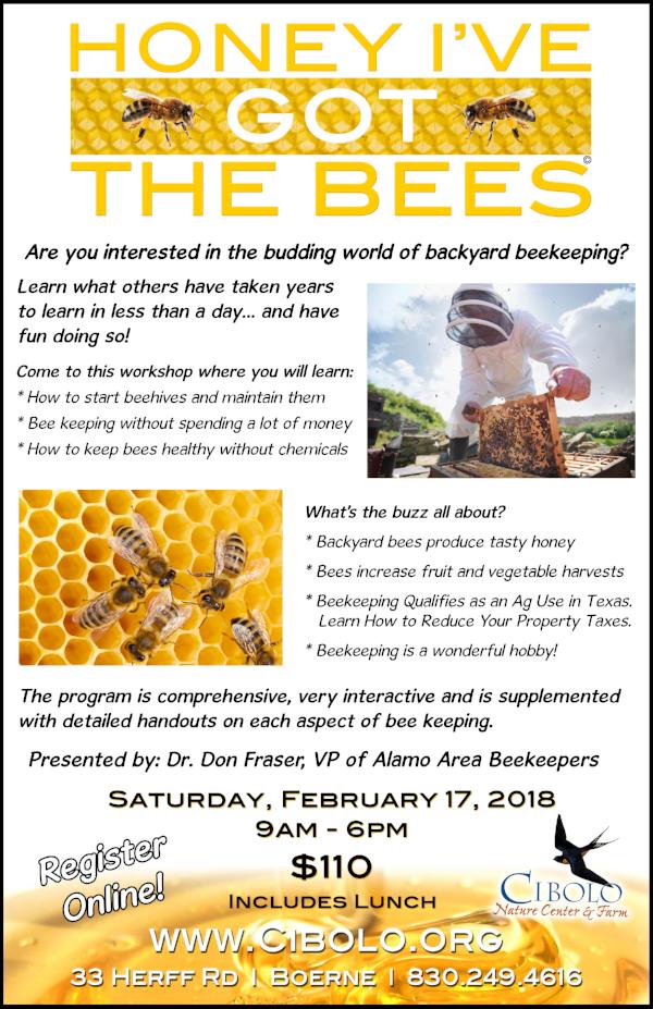 "FARM: ""Honey, I've Got the Bees"" Workshop"