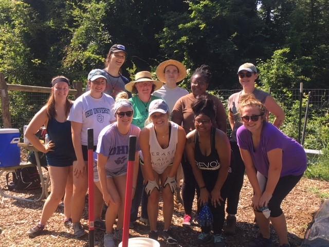 Nelsonville Community Garden Update