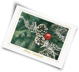 Click here to order your Holiday Cards