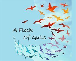 Register for February 4 class: A Flock of Gulls