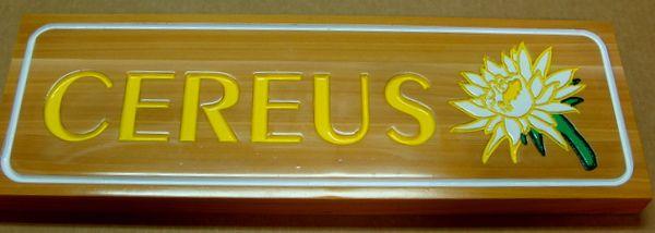 "GA16689 - Carved Cedar Wood Sign with Engraved Word ""Cereus"" and Cereus Flower"