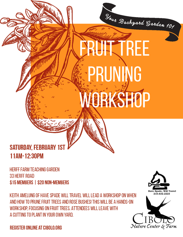 FARM: Fruit Tree and Rose Pruning
