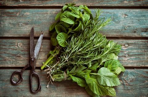 The Health Benefits of Fresh Herbs