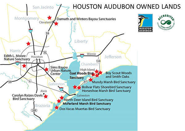 Galveston Bay Coastal Spine | Advocacy | Houston Audubon on texas map, puerto vallarta bay map, galveston gulf map, galveston east end map, lake houston, galveston pier map, the woodlands, galveston ship channel map, galveston coastline map, montgomery county, west bay map, trinity bay map, galveston jetties map, puget sound map, mobile bay map, galveston tx map, beach city, frisco bay map, galveston texas, lake jackson, delaware inland bays map, la porte, seattle bay map, port of houston, san francisco bay map, clear lake, san jacinto river, permian basin, brazoria county, moses lake, nueces river map, ocean city bay map,