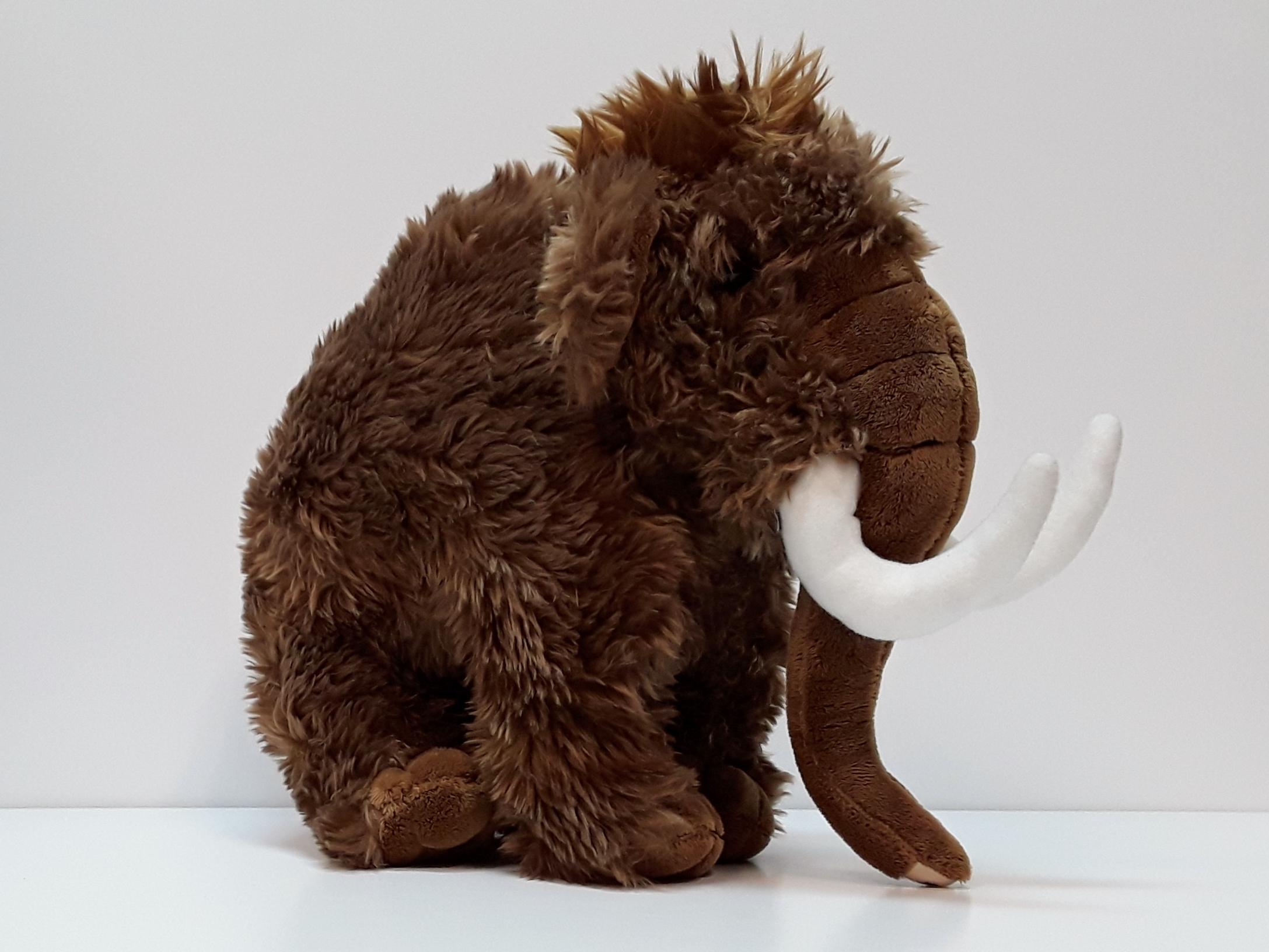 "14"" Mammoth"