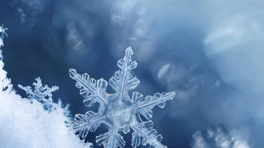 Winter Wonderland Walk
