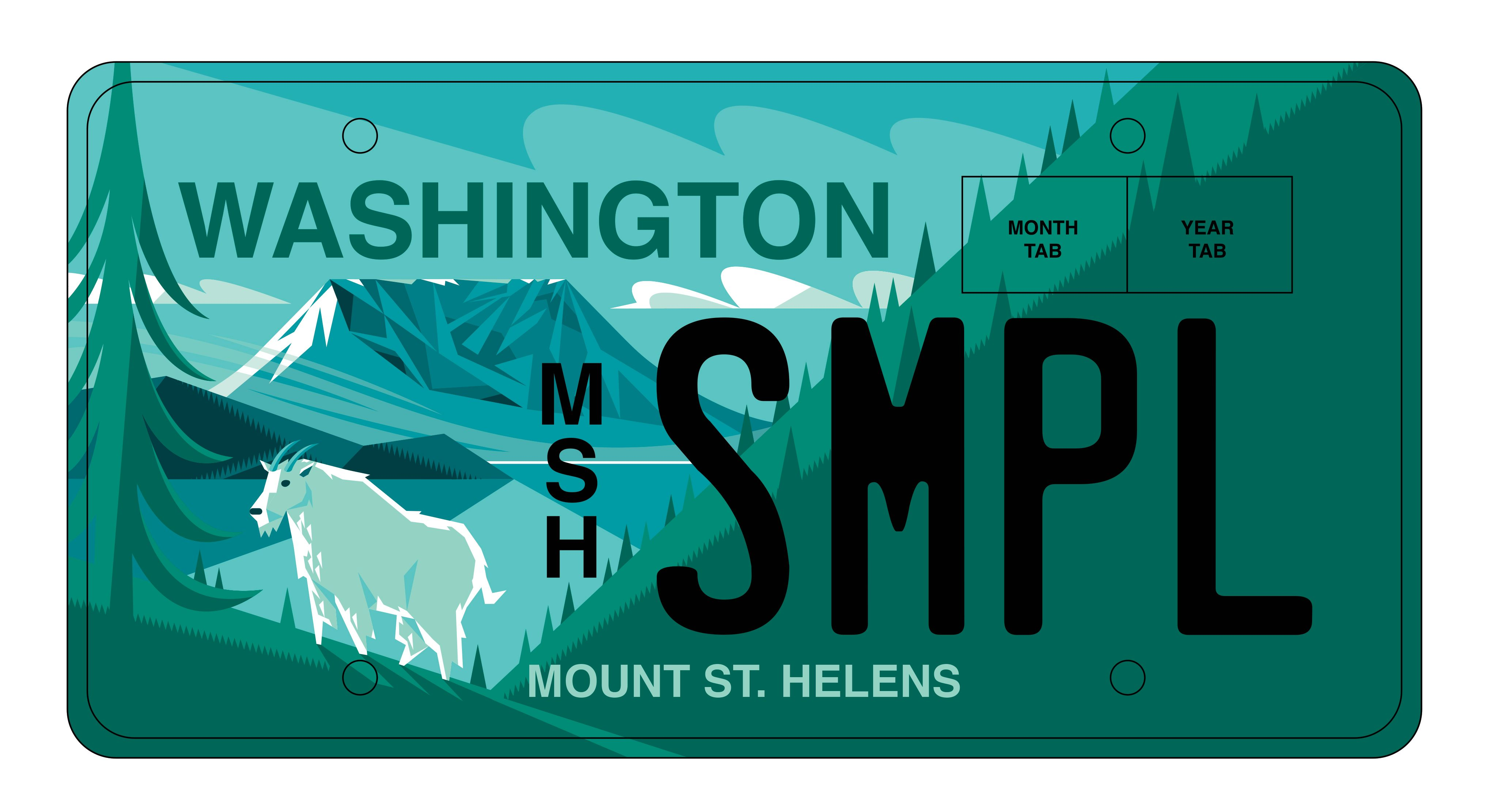 MSH license plate