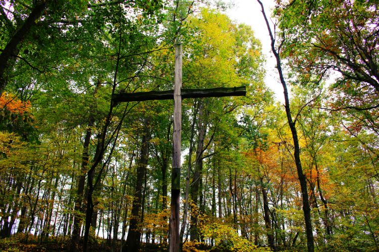 Amphitheater Cross Fall