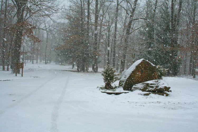 Winter Gallery 2