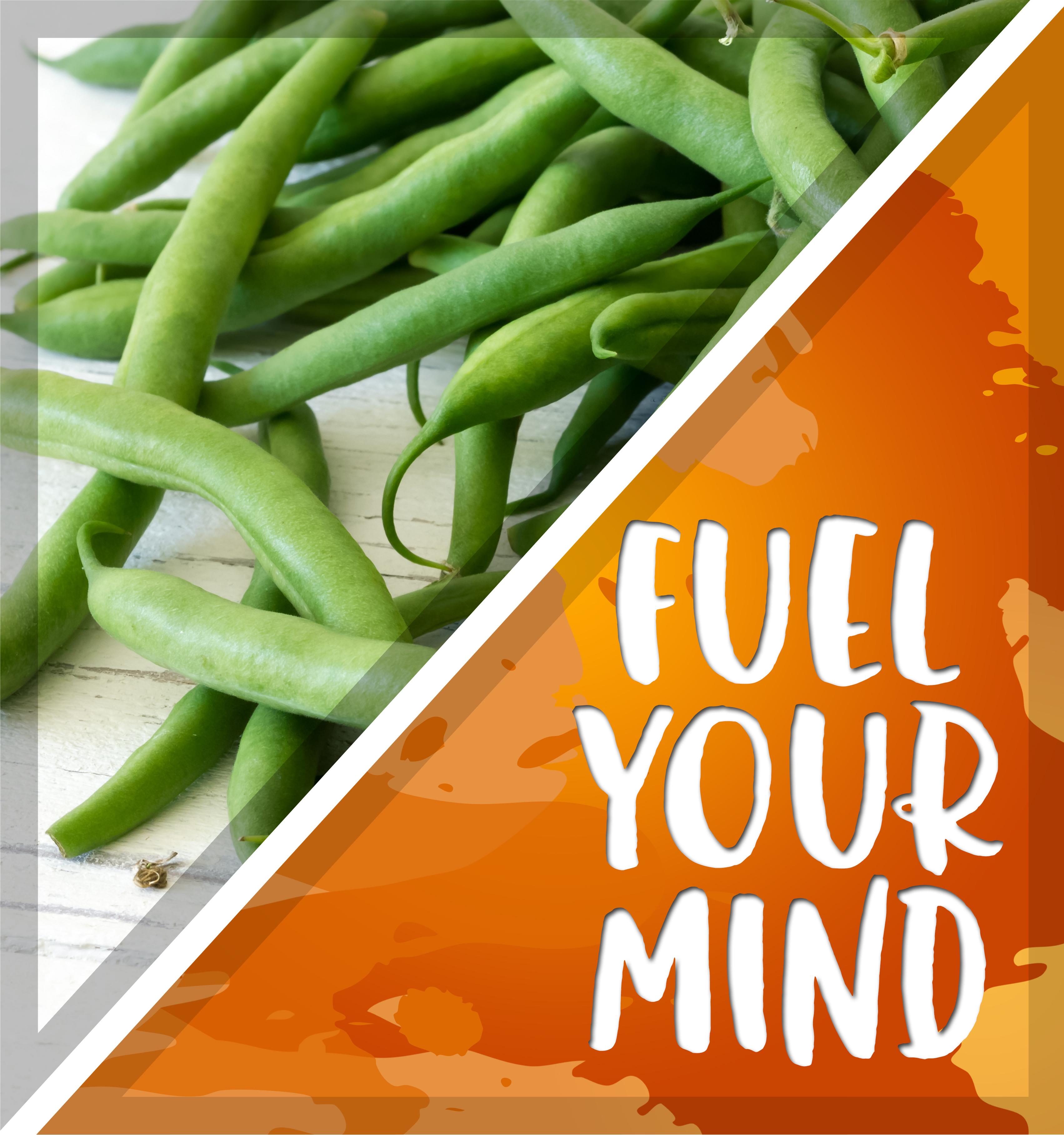 Fuel Your Mind
