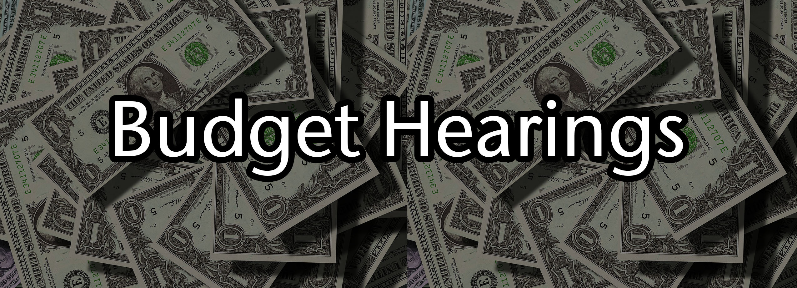 Budget Hearing Spring 2019