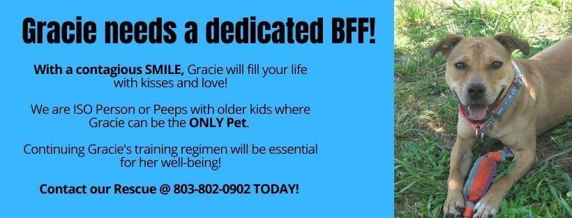 Help Gracie!