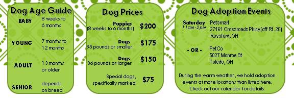 dog age and price guide january 2014