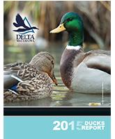 2015 Ducks Report