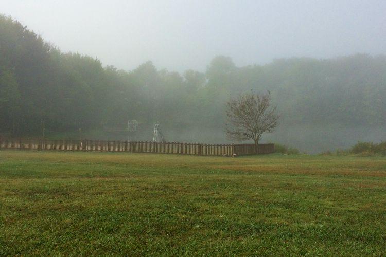 Lower Lake Fog Fall