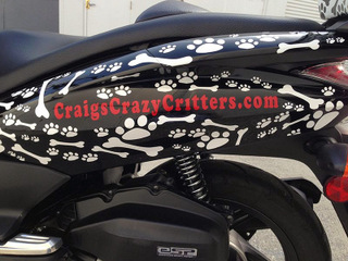 Unique Ideas for Vehicle Wraps and Graphics in Orange County